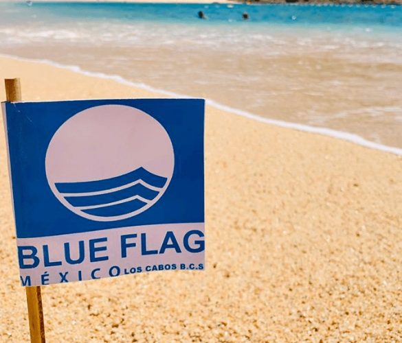 México se posiciona como líder de América en certificaciones Blue Flag